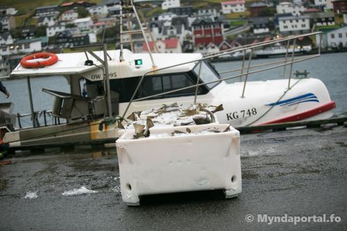 Stakkavík 25092019 17-14-10 (1 of 1)