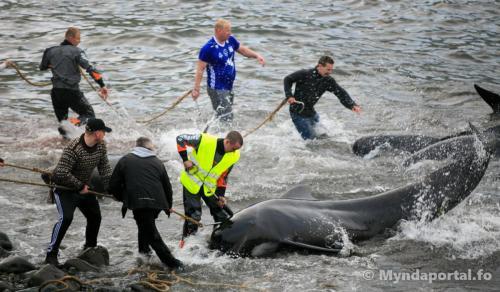 grind Borðoyavík 30062018-1